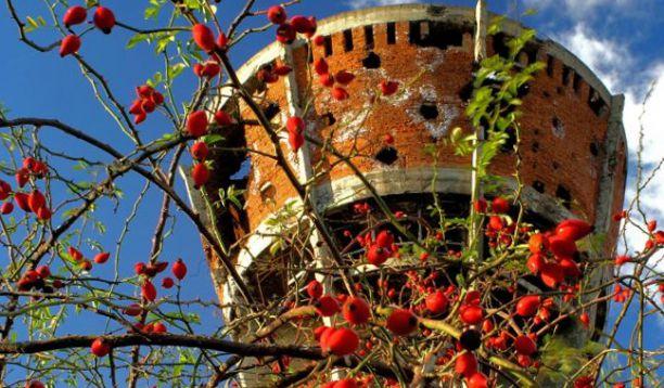 Image result for vukovar rat toranj